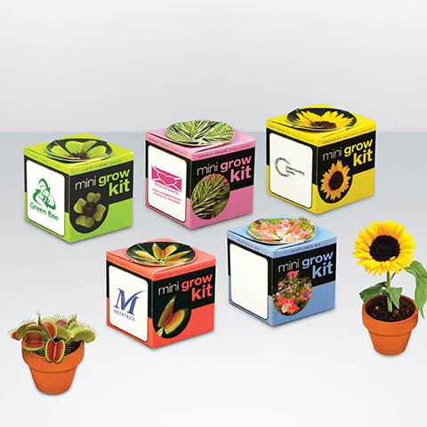 GRANITA - Pot en terre cuite publicitaire personnalise ECO036
