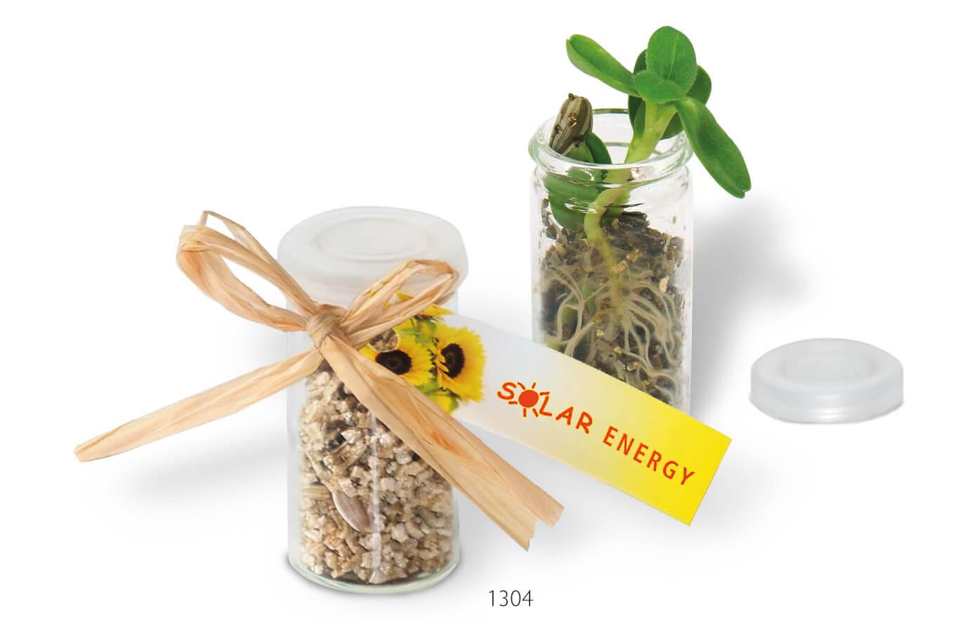Mini serre publicitaire ecologique ECO057