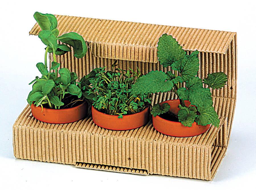 Trio d'herbes publicitaire ecologique ECO063