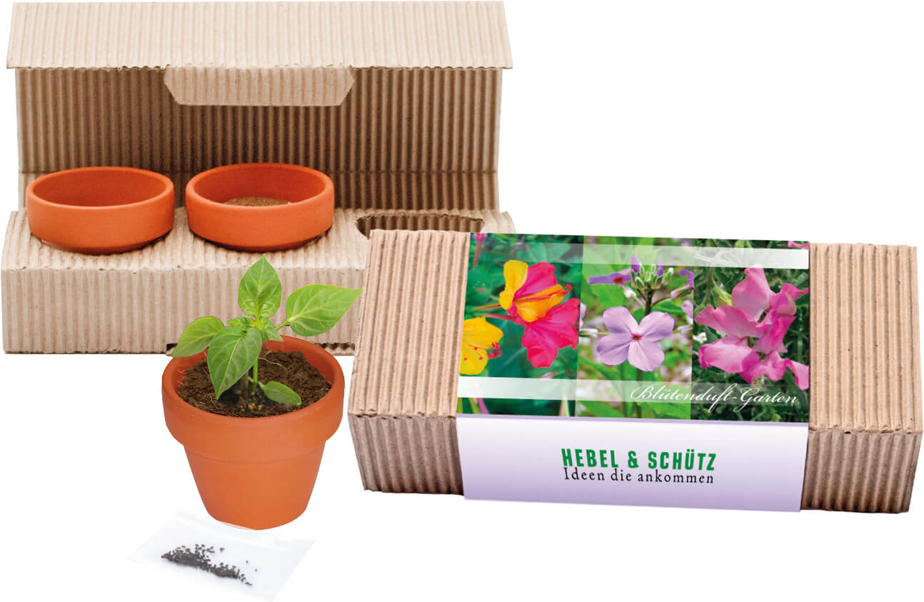 Trio de fleurs de jardin ecologique publicitaire ECO064