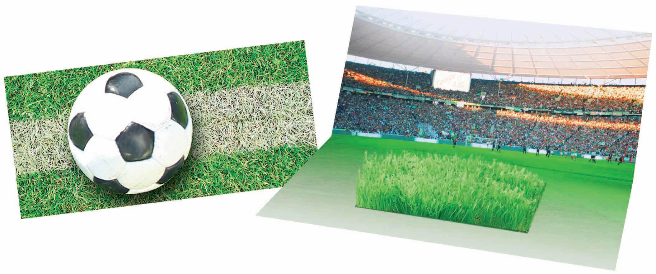 Carton d'inviation ecologique publicitaire ECO071