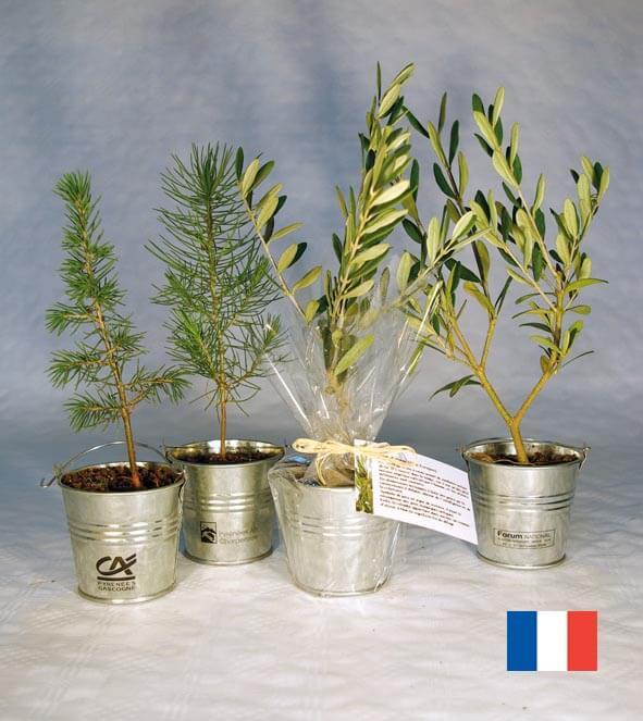 Plant d'arbre en pot zinc ecologique publicitaire ECO106