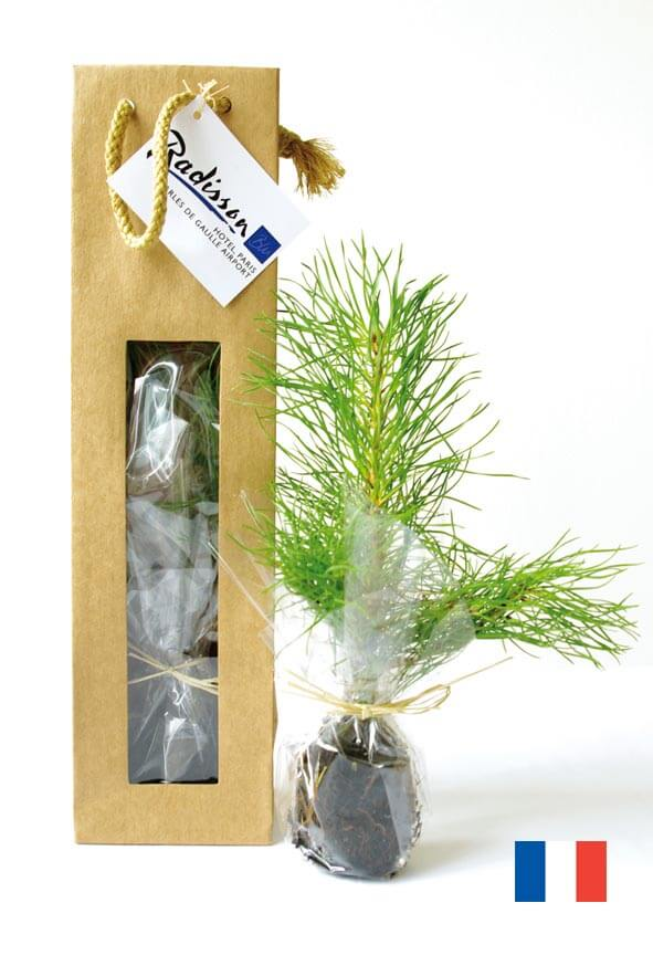 Plant d'arbre en sac kraft ecologique publicitaire ECO108