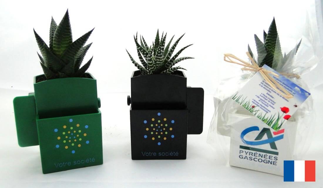 La box vegetale ecologique publicitaire ECO123