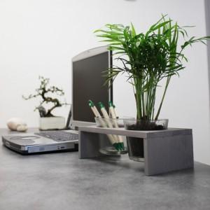 choisir sa plante de bureau